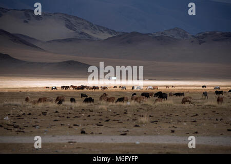 The subtle play of sunlight breaking through the clouds on an autumn afternoon in the Altai Mountains, Mongolia, - Stock Photo