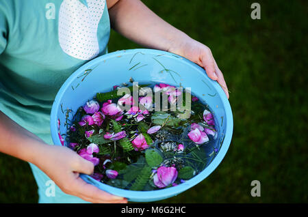 Child playing in the garden with flower petals and greens mixed in water - Stock Photo