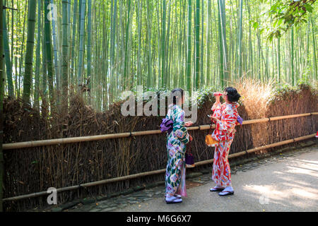 Young japanese women dressed in traditional kimono standing at the bamboo forest in Arashiyama, Kyoto, Japan - Stock Photo