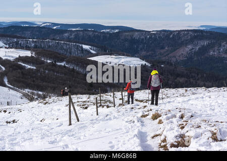 People hiking in the Vosges mountains in winter on a snowy ridge, Hohneck, France. - Stock Photo
