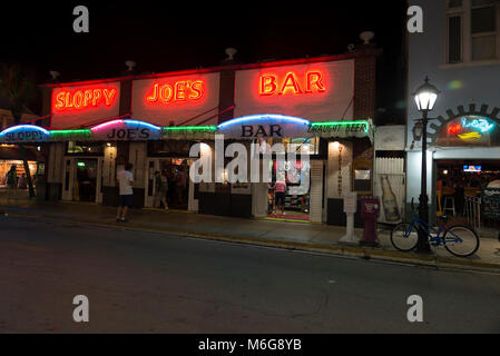 bar, beer, cruise, drink, Durban street, famous, Florida, hamn, hamninlopp, job, jobb, Key West, kryssning, känd, - Stock Photo