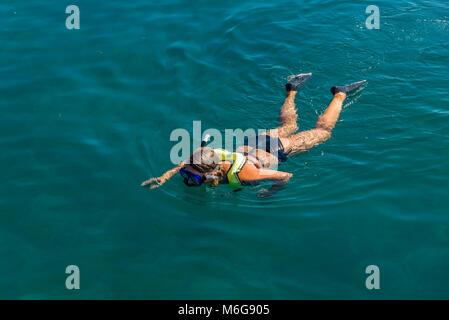 USA, Florida, Key West, solskensstaten, semester, varmt, soligt, fritid, njuta, ledighet, snorkling, hav, fiskar, - Stock Photo