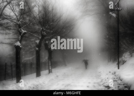 A man walking on the street under the snow in a foggy winter morning - Stock Photo
