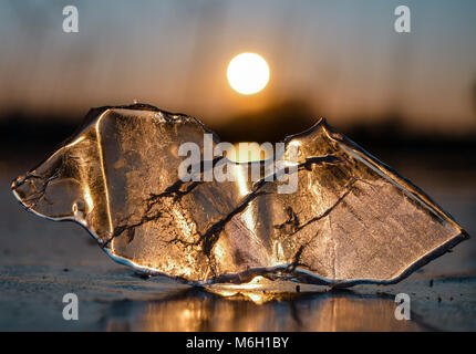03 March 2018, Germany, Brandenburg: A piece of ice lying in the last light of the setting sun on the frozen black - Stock Photo