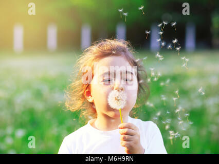 Beautiful little Girl blowing dandelion flower in sunny summer park. Happy cute kid having fun outdoors at sunset. - Stock Photo