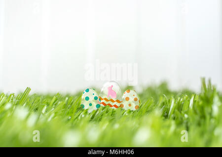 Glass easter eggs on green grass field at white fence in backyard garden. happy easter day concept.leave sapce for - Stock Photo