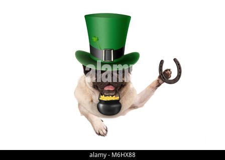st patricks day pug puppy dog with green leprechaun hat, holding horseshoe and pot with golden coins, isolated on - Stock Photo
