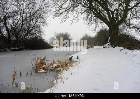 The Basingstoke Canal at Odiham in Hampshire on a snowy, winter's day - Stock Photo