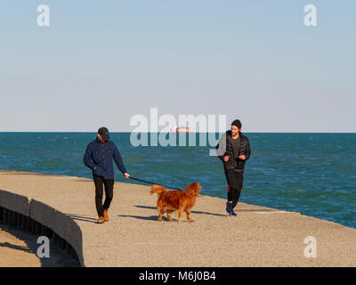 A man jogs past a man walking a friendly golden retriever on the sea wall on Lake Michigan, Chicago. Carter Harrison - Stock Photo