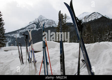 Cross Country Skis sitting in a snow bank at Lake Louise - Stock Photo