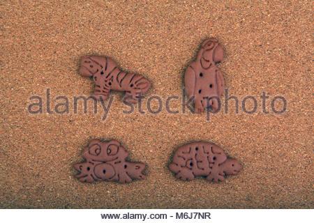 Chocolate baby cookies animals studio quality - Stock Photo