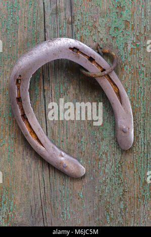 horse shoe hanging on grunge wooden plank - Stock Photo