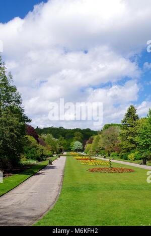 Main Formal Flower Bed of Seaton Park on a Spring Day. Old Aberdeen, Scotland, UK. Spring, 2016. - Stock Photo