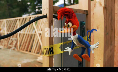 Woody Woodpecker is an American live-action/computer-animated family comedy film produced by Mike Elliott and directed - Stock Photo