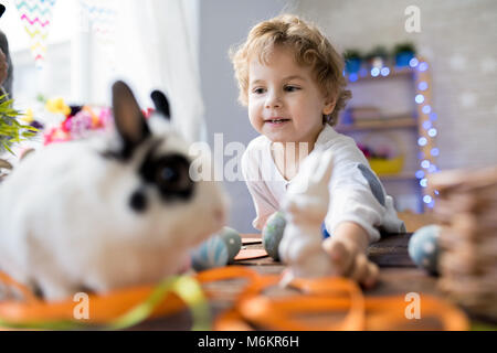 Little Boy Playing with Pet Bunny - Stock Photo