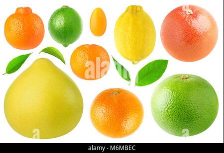 Isolated citrus fruits collection. Clementine, lime, pomelo, kumquat, tangerine, lemon, orange, pink and white grapefruit - Stock Photo