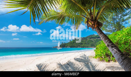 Tropical beach with palm and a sailing boat in the sea - Stock Photo