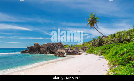 Rock and palms on Tropical beach - Stock Photo
