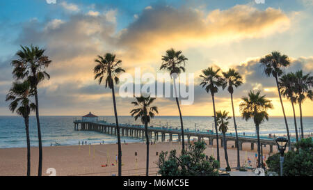 Palm trees on Manhattan beach and pier at sunset, Los Angeles, California. - Stock Photo
