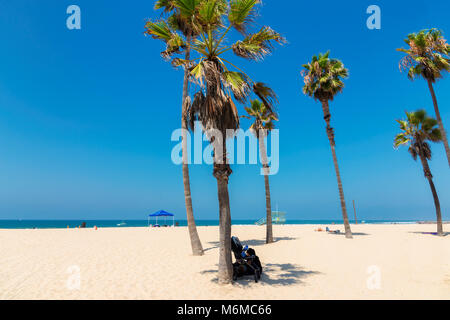 Palm trees on Manhattan beach at sunny day, Los Angeles, California. - Stock Photo