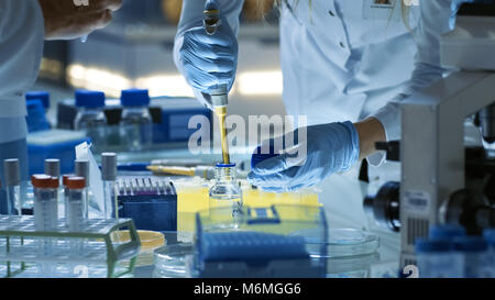 Female Research Scientist Uses Micropipette Filling Test Tubes. Scientist Works in a Team of Scientists Trying to - Stock Photo