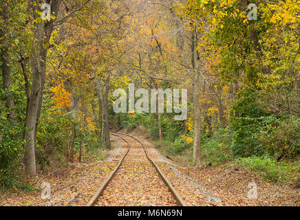 Beautiful fall foliage of orange, yellow and greens boarder an old rail road that is curving throught the tree lined - Stock Photo