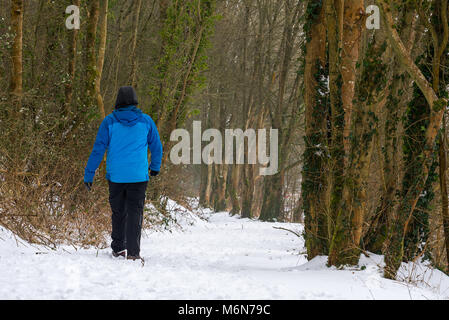 A lone man in warm winter clothes walks along a winding snow covered forest path. - Stock Photo