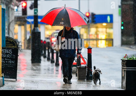 Bridport, Dorset, UK.  5th March 2018.  UK Weather.  A dog walker walking in the pouring rain with an umbrella in - Stock Photo