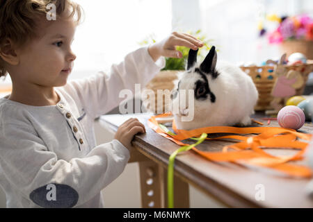 Adorable Little Boy Playing with Pet Bunny - Stock Photo