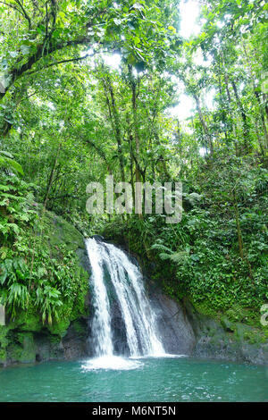 Crayfish Waterfall or La Cascade aux Ecrevisses, at the National Park of the french caribbean island Guadeloupe, - Stock Photo