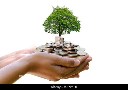 hand tree Coin Isolate hand Coin tree The tree grows on the pile. Saving money for the future. Investment Ideas - Stock Photo