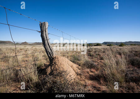 An old style hand woven farm fence on a sheep and cattle farm in the Colesberg district of the Karoo. - Stock Photo
