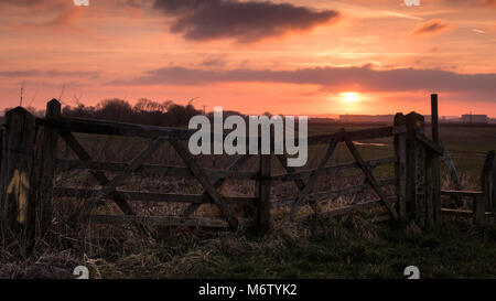 Old closed five bar wooden gates in front of farmers field at Tetney Lock, NE England UK - Stock Photo