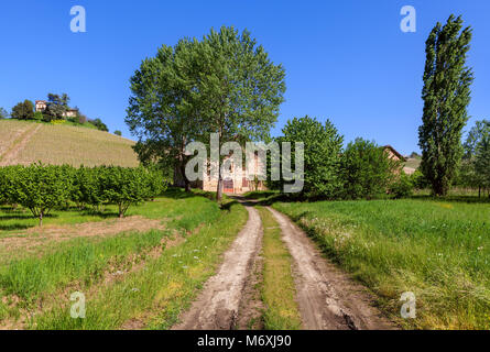 Narrow rural road between green fields as old farmhouse among trees on background in Piedmont, Northern Italy. - Stock Photo