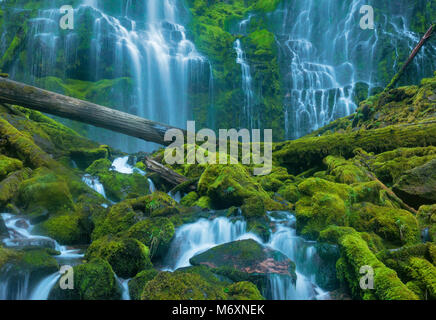 Proxy Falls, Three Sisters Wilderness, Willamette-Deschutes National Forest, Oregon - Stock Photo