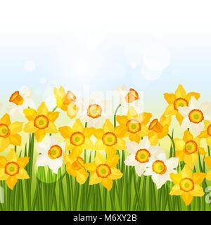 Spring flowers narcissus seamless pattern horizontal border - Stock Photo