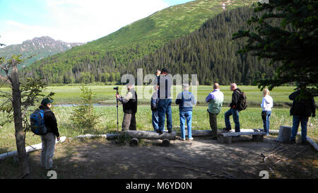 Visitors Enjoying the Eastern Bear Viewing Area   . Chinitna Bay is a popular destination.Expect to share the bear - Stock Photo