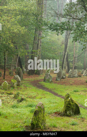 The megalithic menhirs of the Alignements de Petit-Menec in the misty woods at dawn, Carnac, Morbihan, Bretagne, - Stock Photo