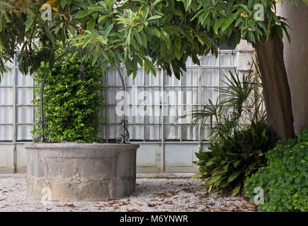 Traditional well next to a glass wall and beside a tree - Stock Photo