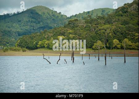 Periyar National Park , Periyar Tiger Reserve in Kerala India - Stock Photo