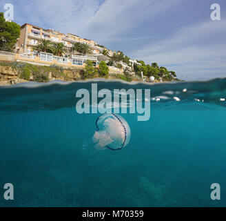 Hotel on the coast of the Mediterranean sea with a jellyfish underwater, split view above and below water surface, - Stock Photo