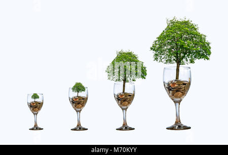 tree Coin glass Isolate increase saving money hand Coin tree The tree grows on the pile. Saving money for the future. - Stock Photo