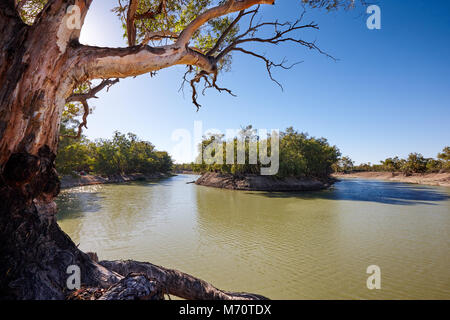 Early morning, Darling River near small outback town of Menindee, Nerw South Wales, Australia - Stock Photo