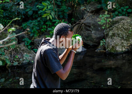 A Young Man Drinks Water From The Forty Springs In The Nechisar National Park, Arba Minch, Ethiopia - Stock Photo