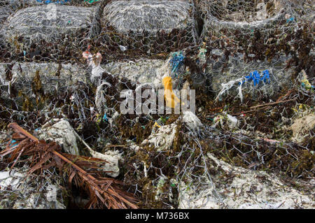 Plastic rubbish entwined in wire mesh and fishing nets on the beach in Jambiani Zanzibar Tanzania mixed with other - Stock Photo