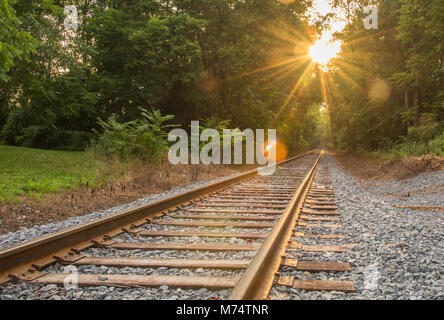 A beautiful starbust effect shines over converging rail road tracks as they are boardered by a lovely green forest. - Stock Photo
