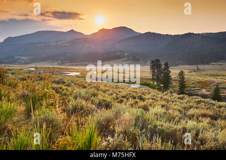Golden morning light over the sagebrush and winding Soda Butte Creek, Yellowstone National Park, Wyoming - Stock Photo
