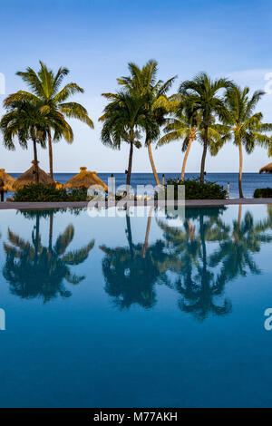 Reflections of palm trees in the swimming pool at Sugar Beach, St. Lucia, Windward Islands, West Indies, Caribbean, - Stock Photo