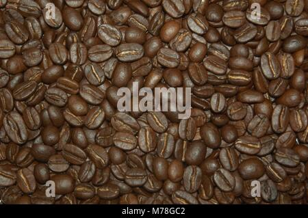 roasted coffee beans What makes a cup of coffee good? Andy sets out to find out and deconstruct the three most important - Stock Photo