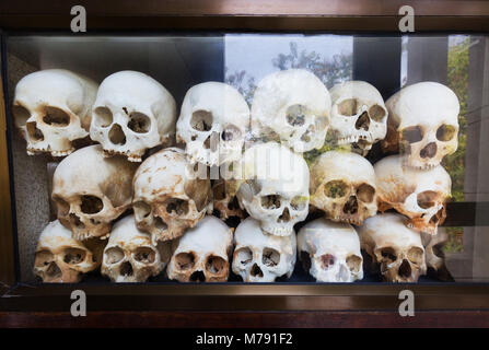 Skulls of the people killed in the Killing Fields at the memorial centre, Choeung Ek Genocide centre museum, Phnom - Stock Photo
